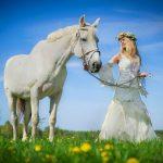 Kvinde med hvid hest på en mark